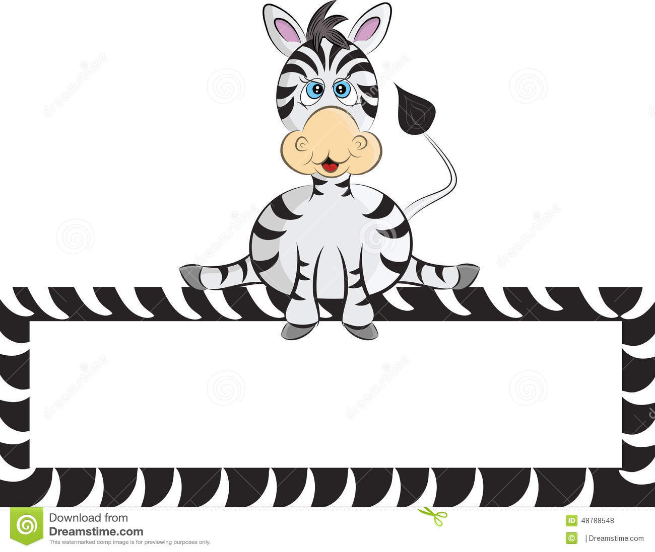The Gallery For Gt Cute Baby Zebras