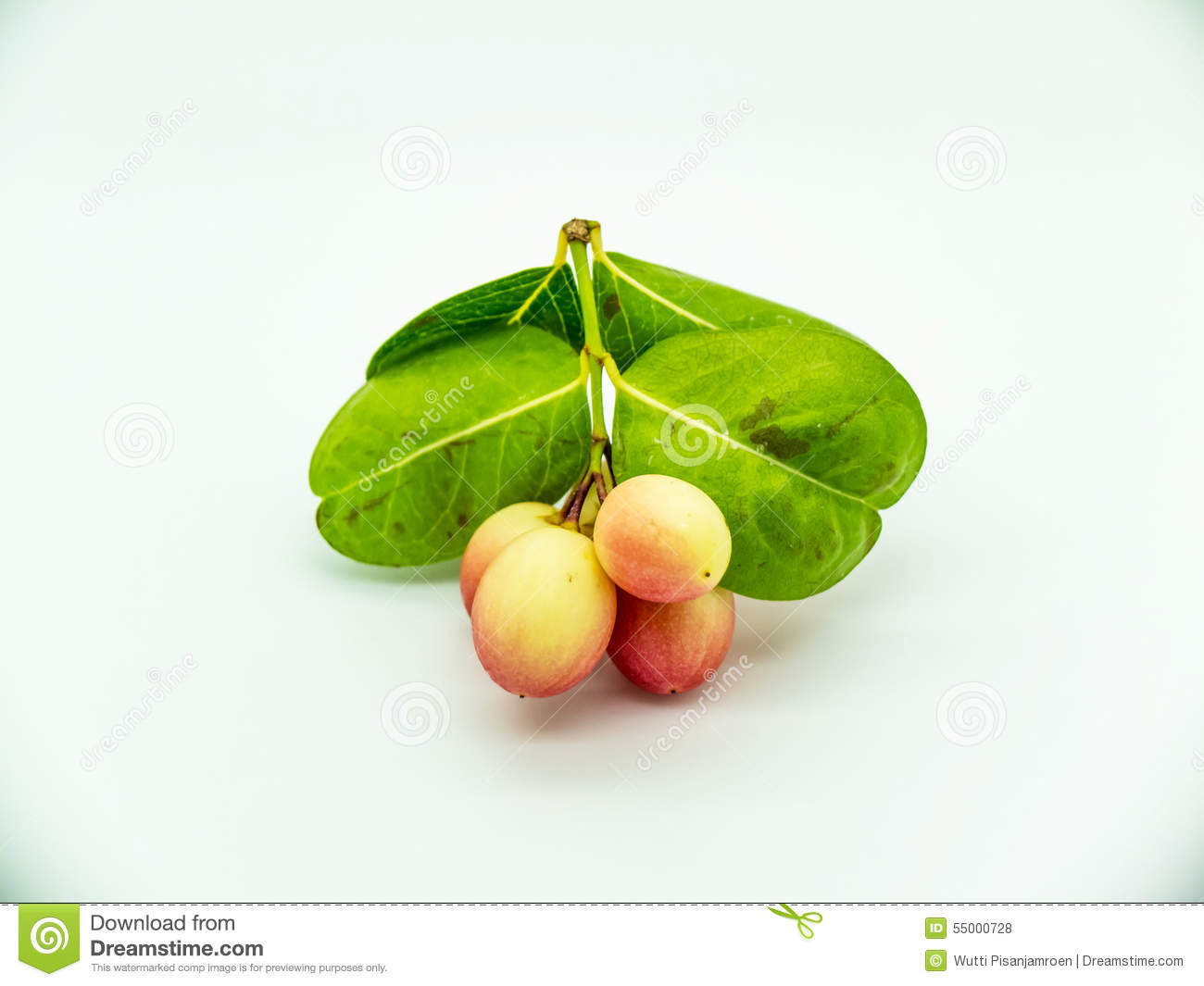 Orkaronda can treat cancer this is a raw food treatment for cancer