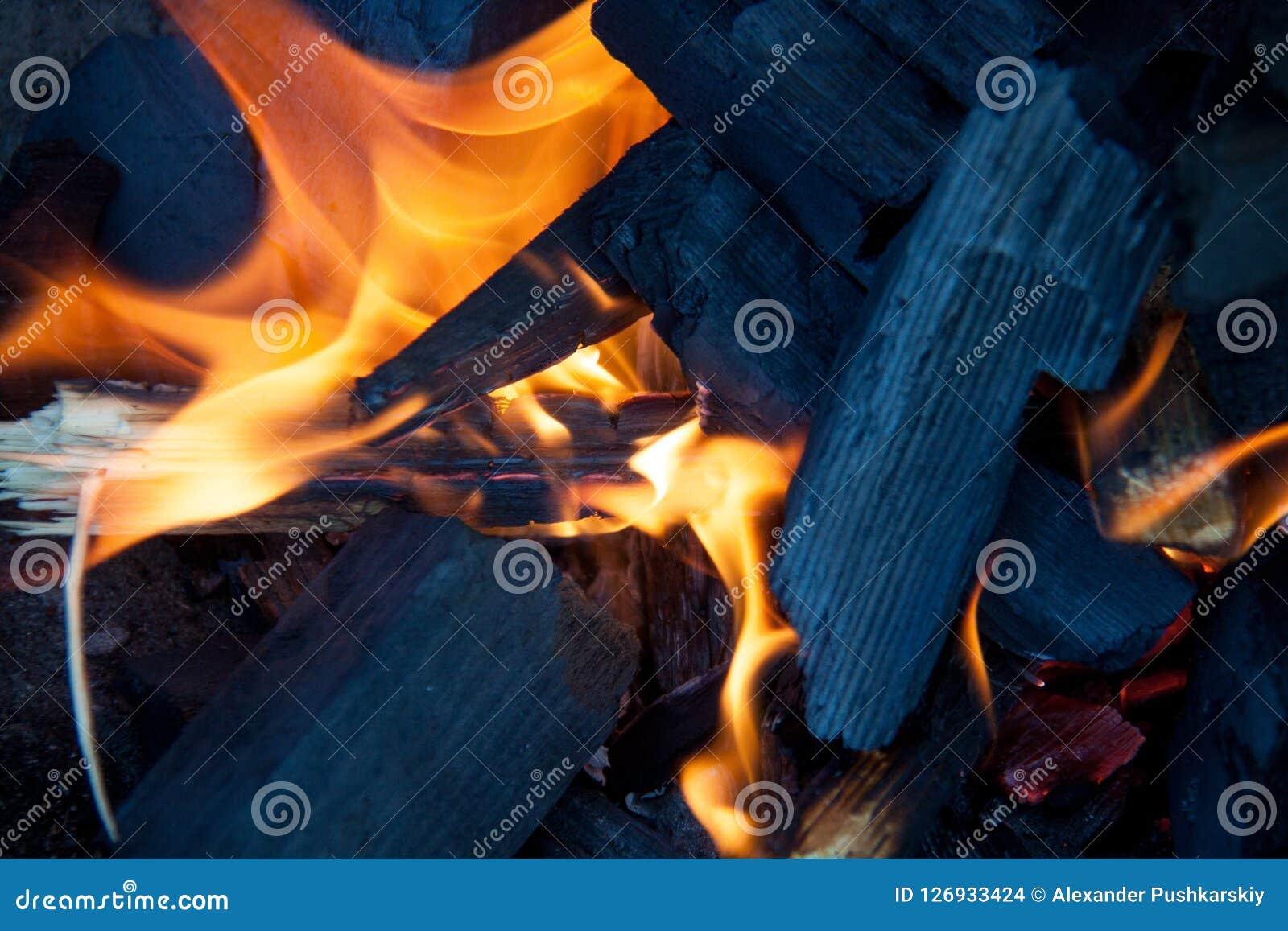 Carvões de madeira ardentes para a grade