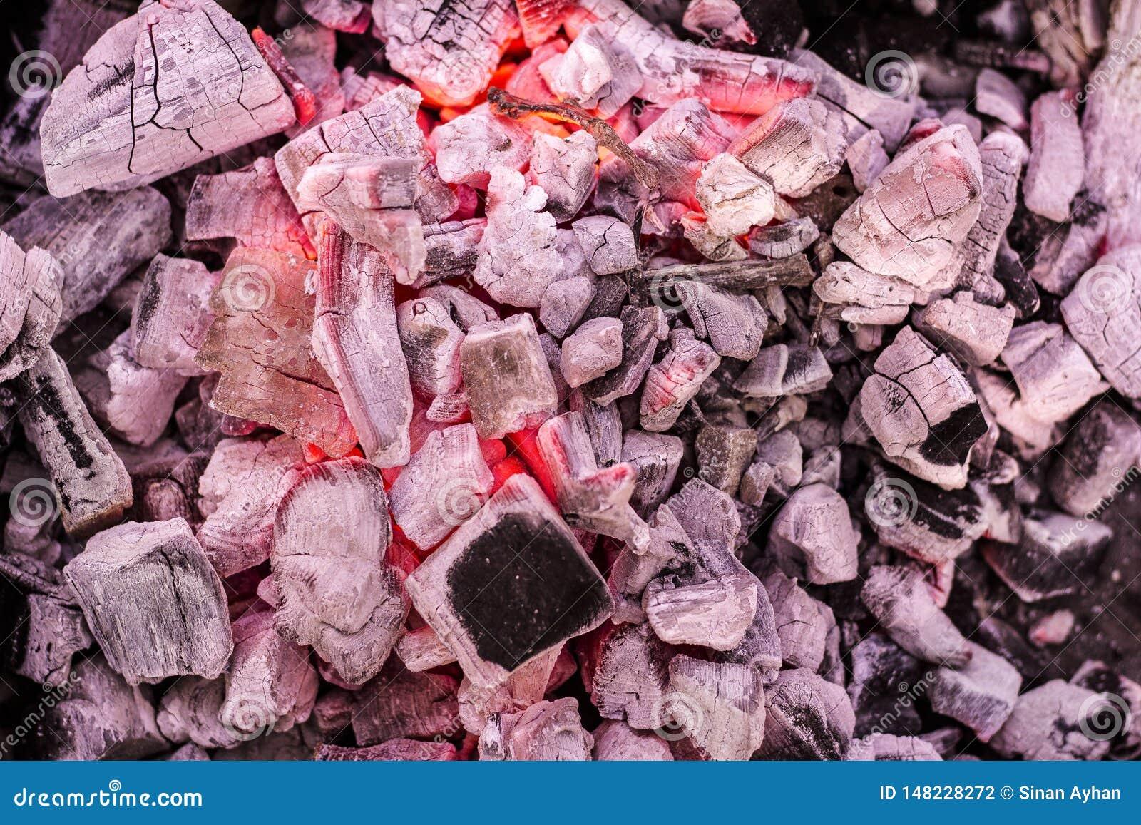 Carvões de queimadura do assado como o teste padrão
