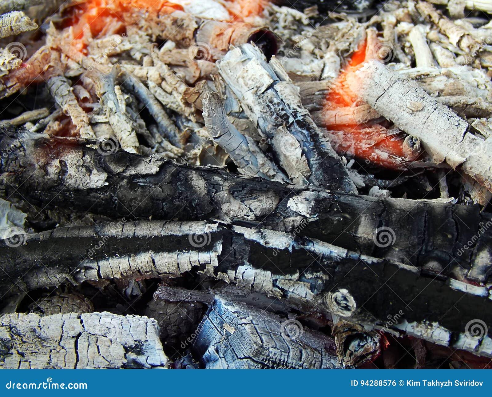 Carvões de uma fogueira ardente