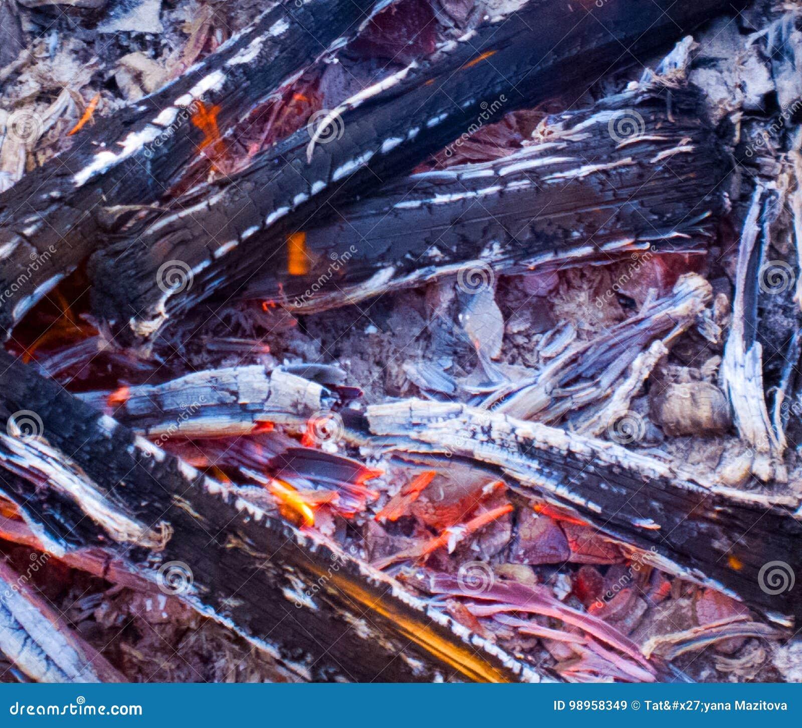 Carvões e textura da cinza Fundo do incêndio Logs queimados fogo