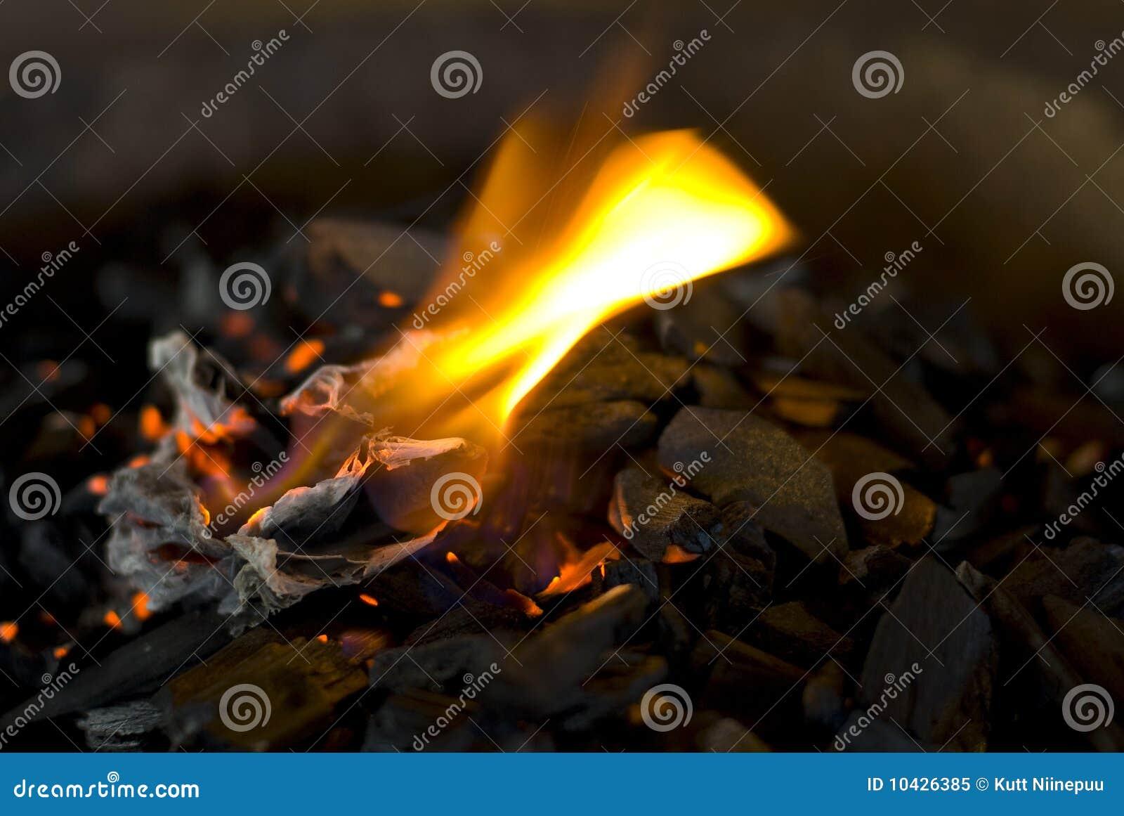 Carvões quentes com flama