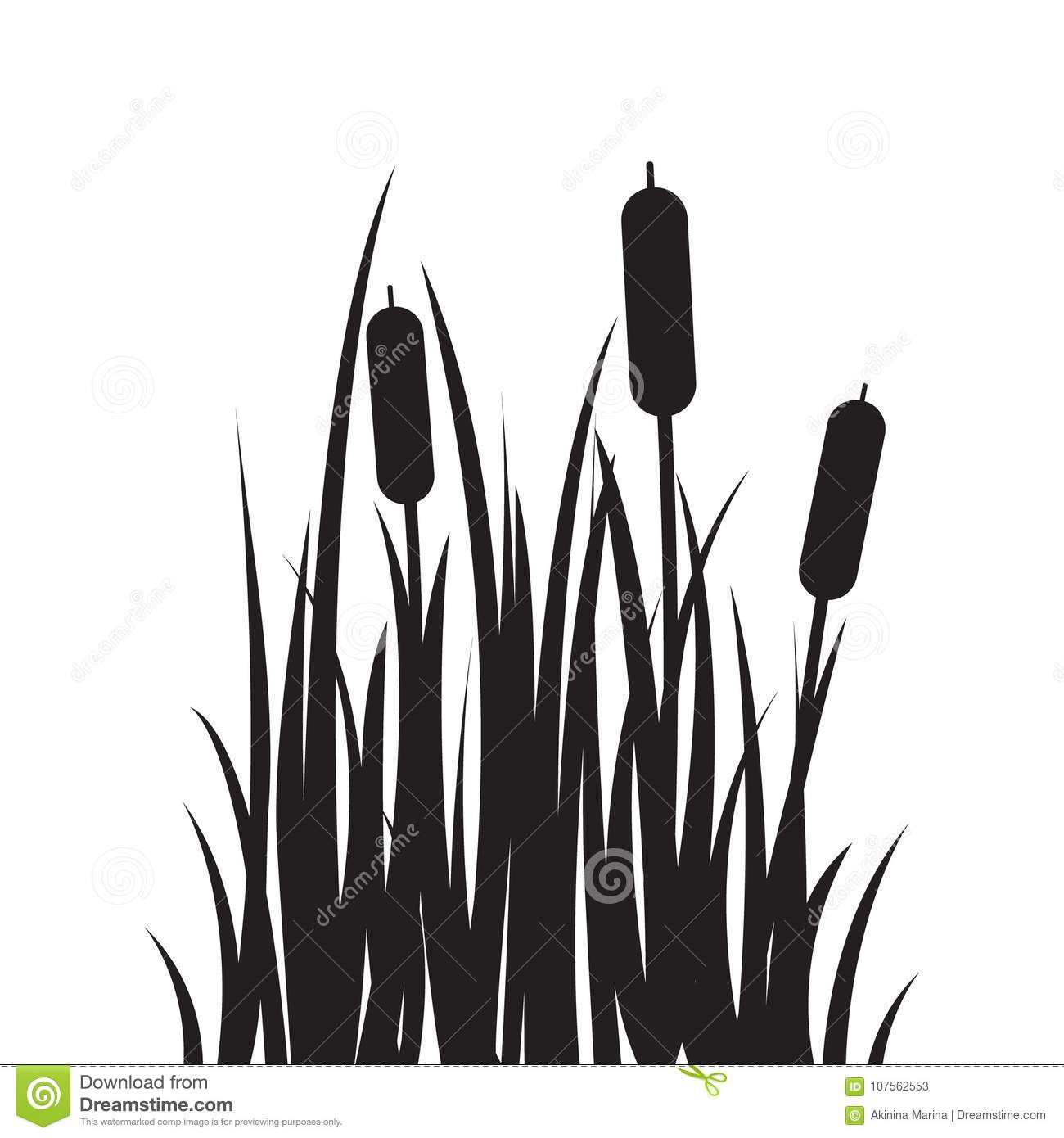 Carved silhouette flat icon, simple vector design. Cartoon grass with bulrush.