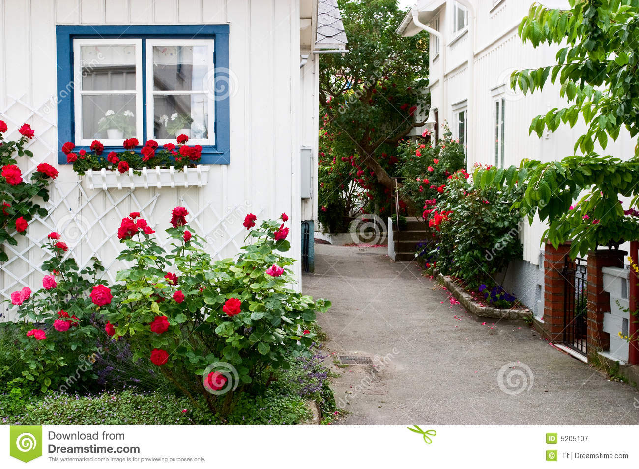 jardins rosas vermelhas : jardins rosas vermelhas:Rose Red House