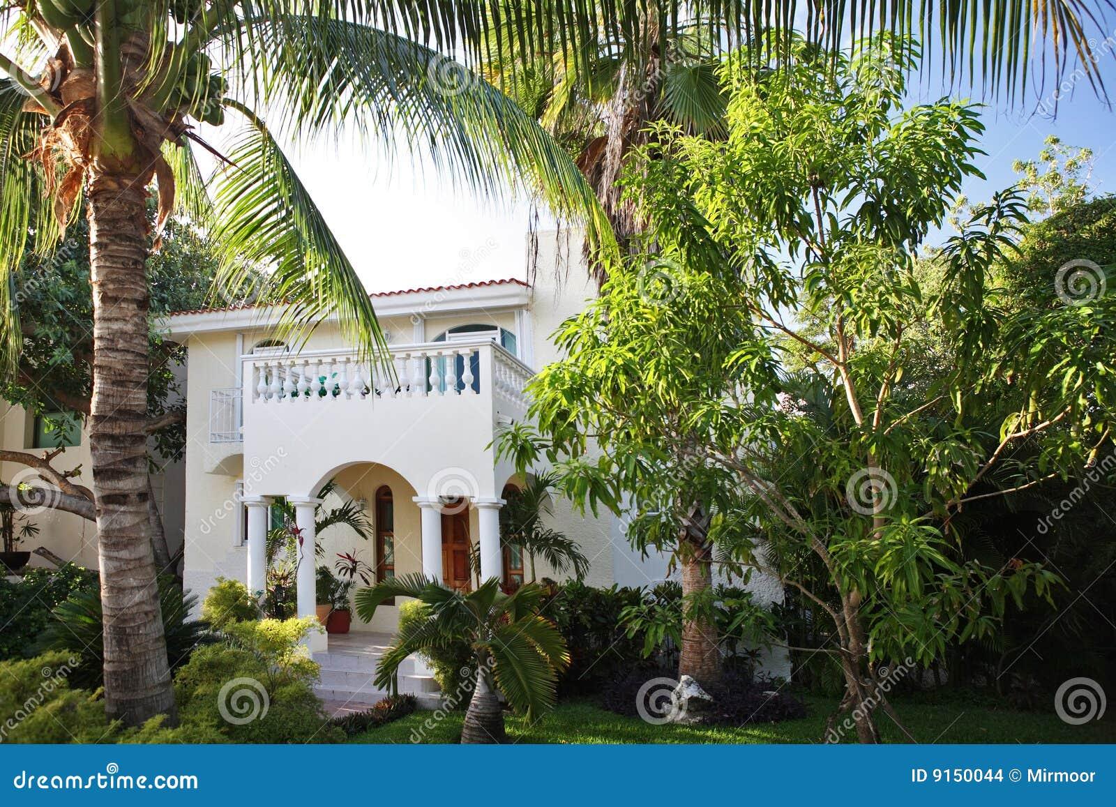 Casa con il giardino tropicale immagini stock immagine - Giardino tropicale ...