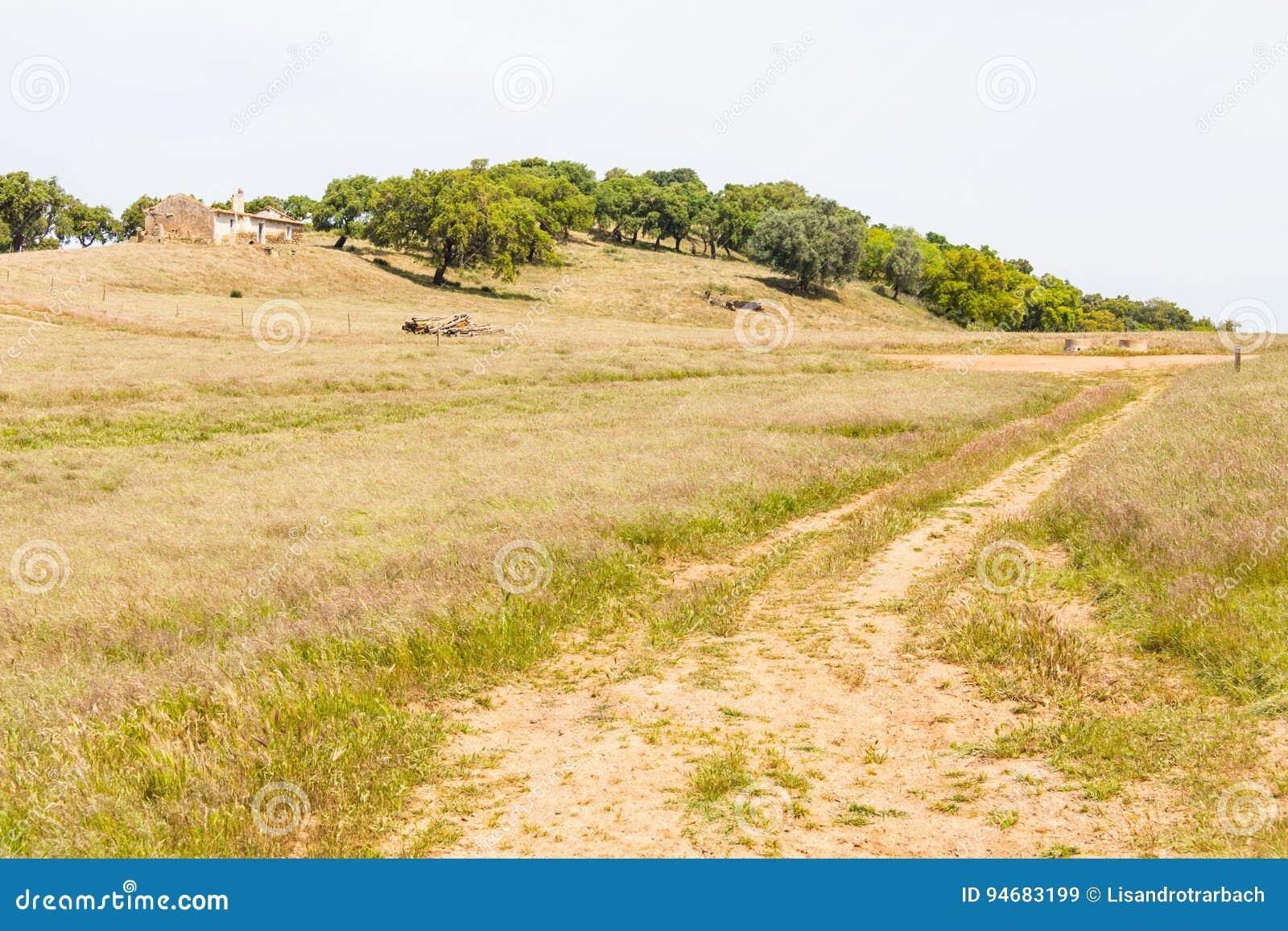 A casa da exploração agrícola, as árvores de cortiça e a estrada abandonadas no Santiago fazem Cacem