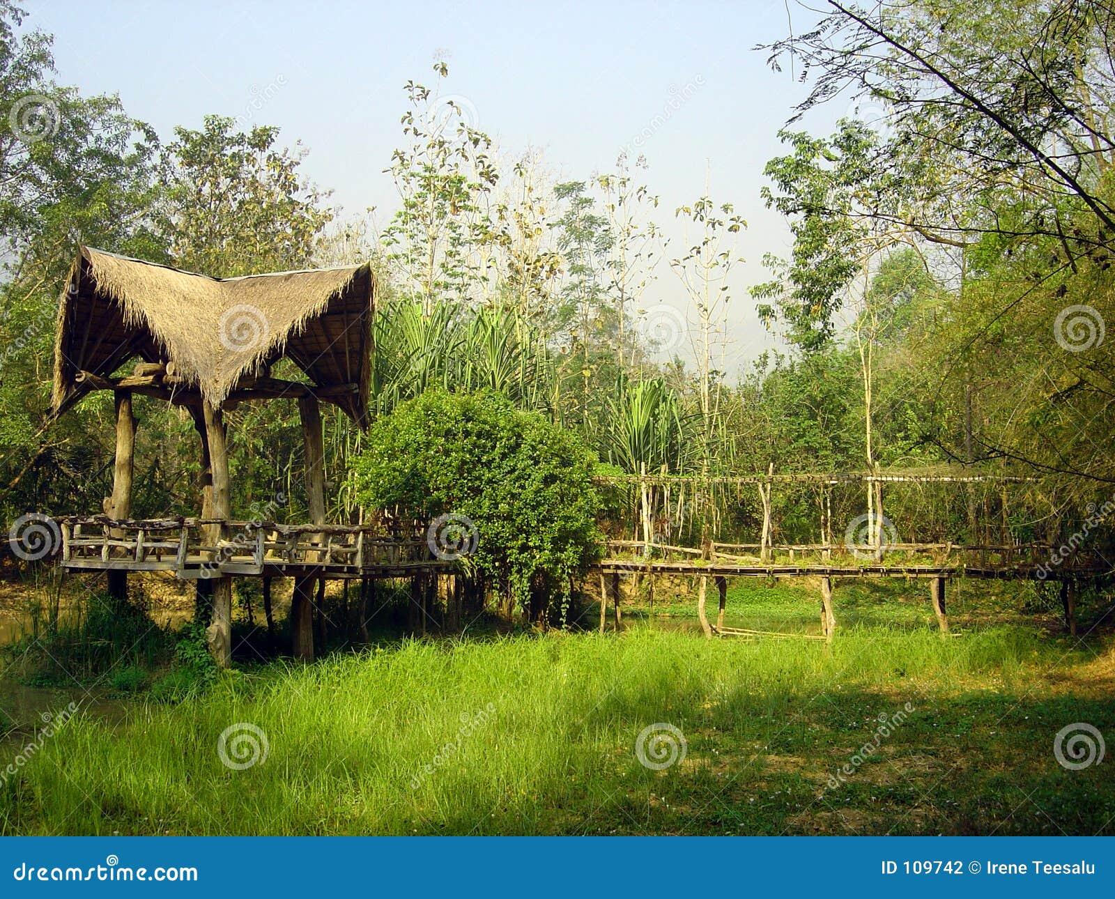 Casa de campo na selva tailandesa