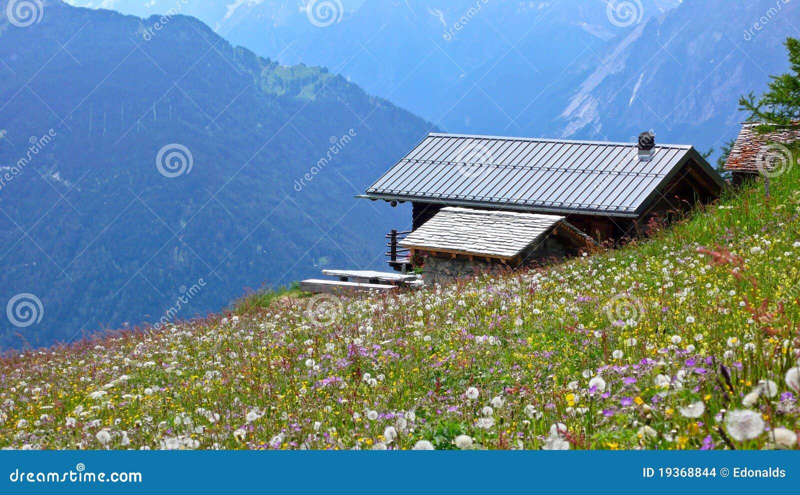 Casa de campo no alpino