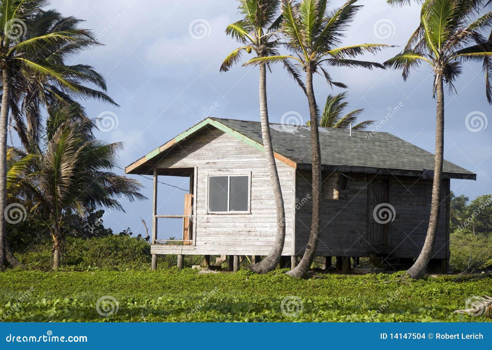 Casa de la caba a con las palmeras nicaragua imagenes de - La casa de las palmeras ...