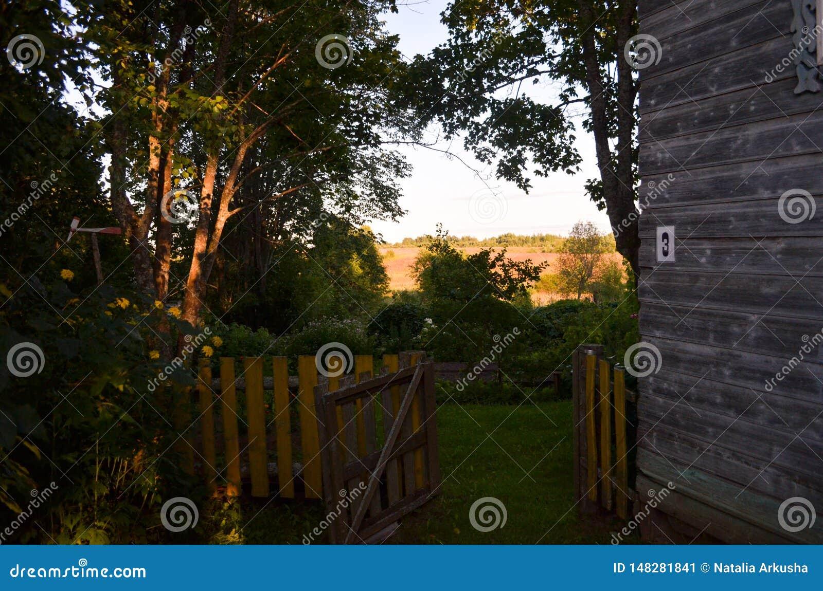 Casa de madera con las ventanas talladas en Vologda Rusia Estilo ruso en arquitectura Casa rusa rústica con el jardín