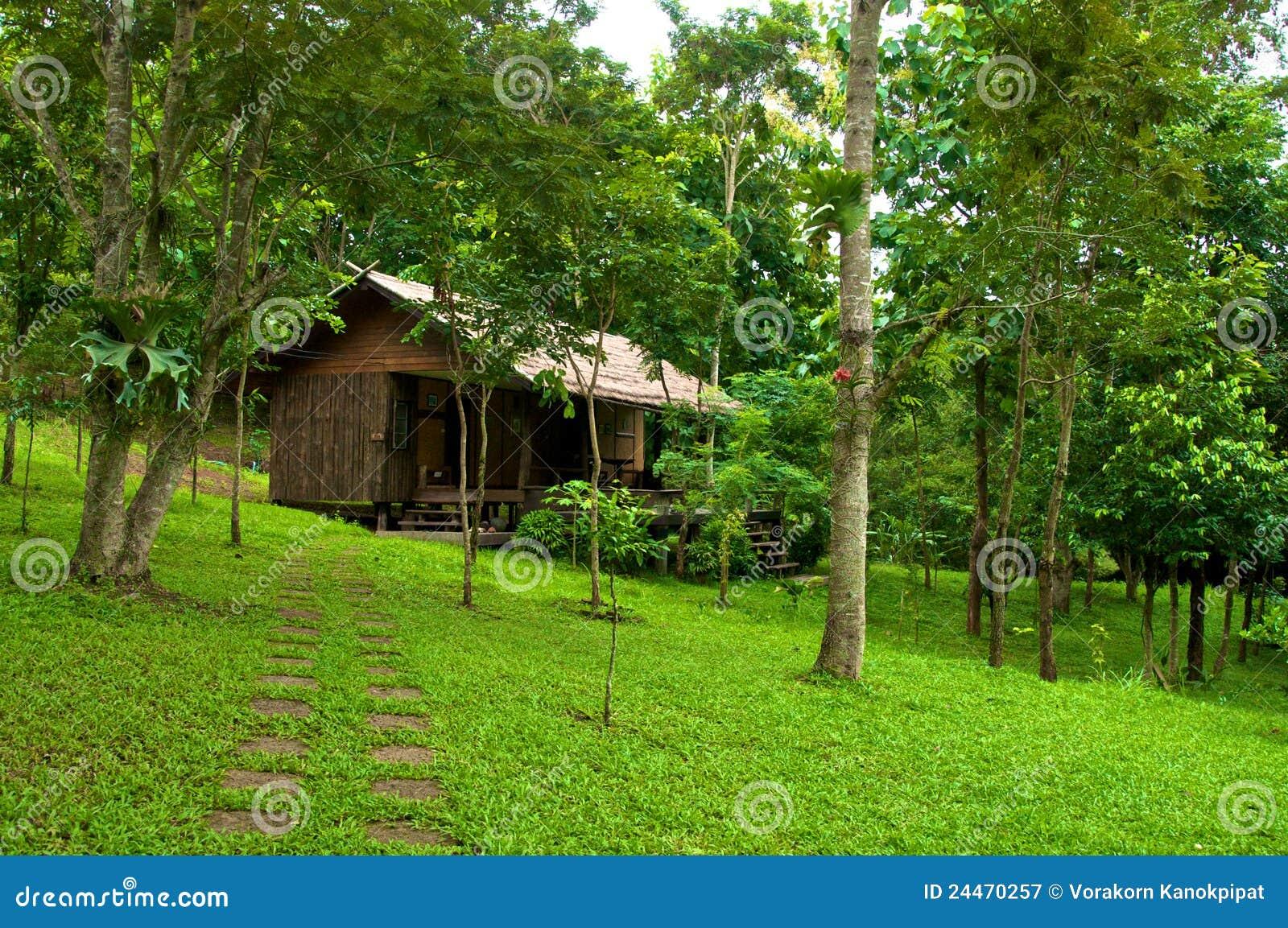 Casa de madera en el bosque fotograf a de archivo libre de - Casas el bosque ...