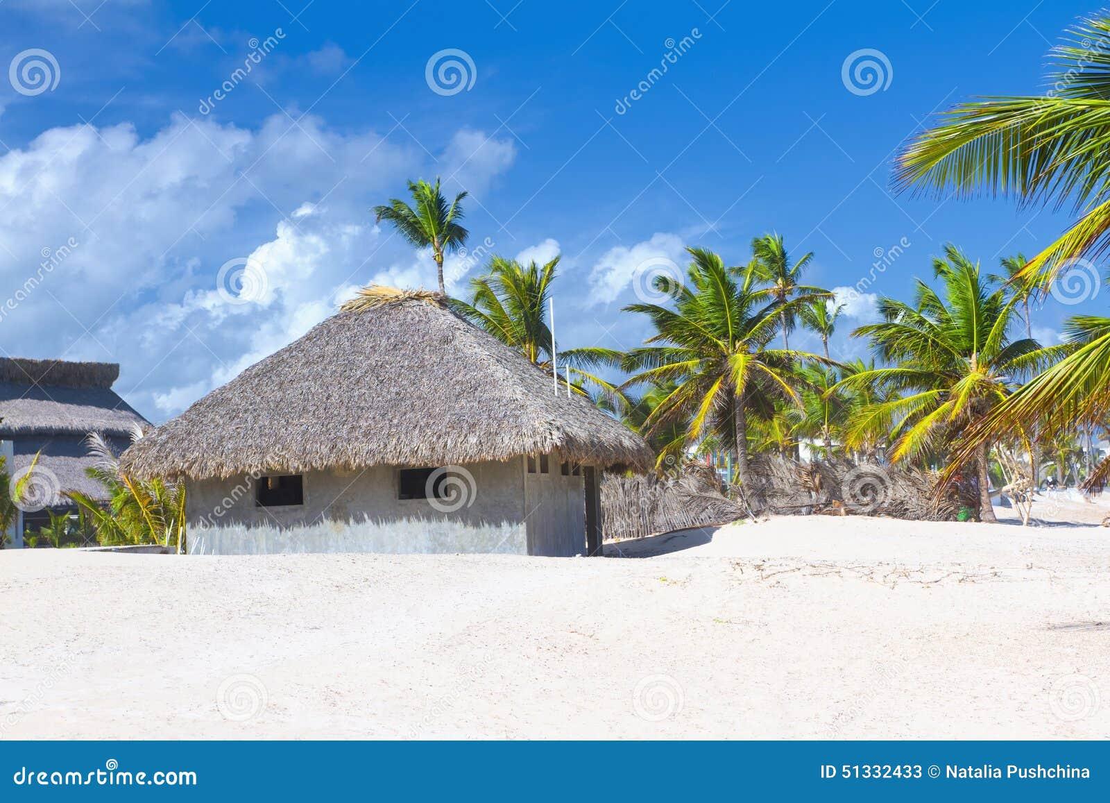 Casa de planta baja de hoja de palma de la azotea en la for La casa de la azotea