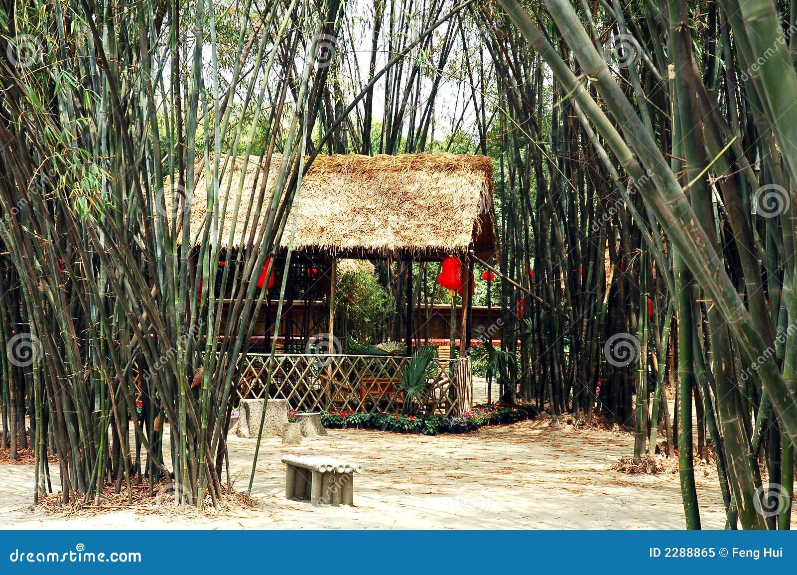 Casa de té de bambú