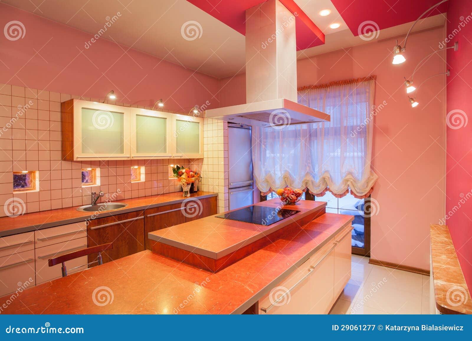 Casa dell 39 amaranto controsoffitto della cucina immagine for Programma di disegno della casa libera
