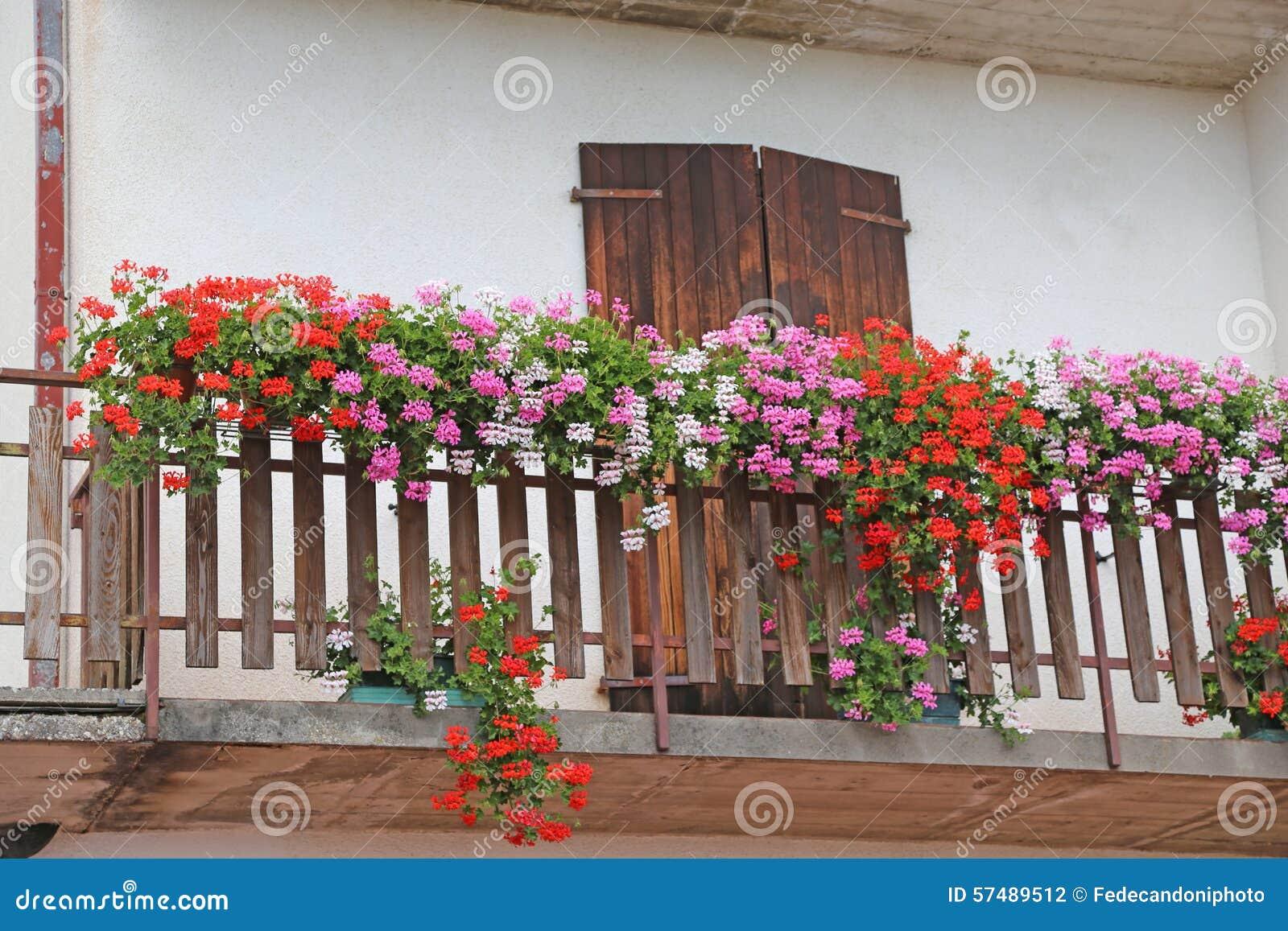 Casa della montagna con il terrazzo fiorito con i gerani di estate