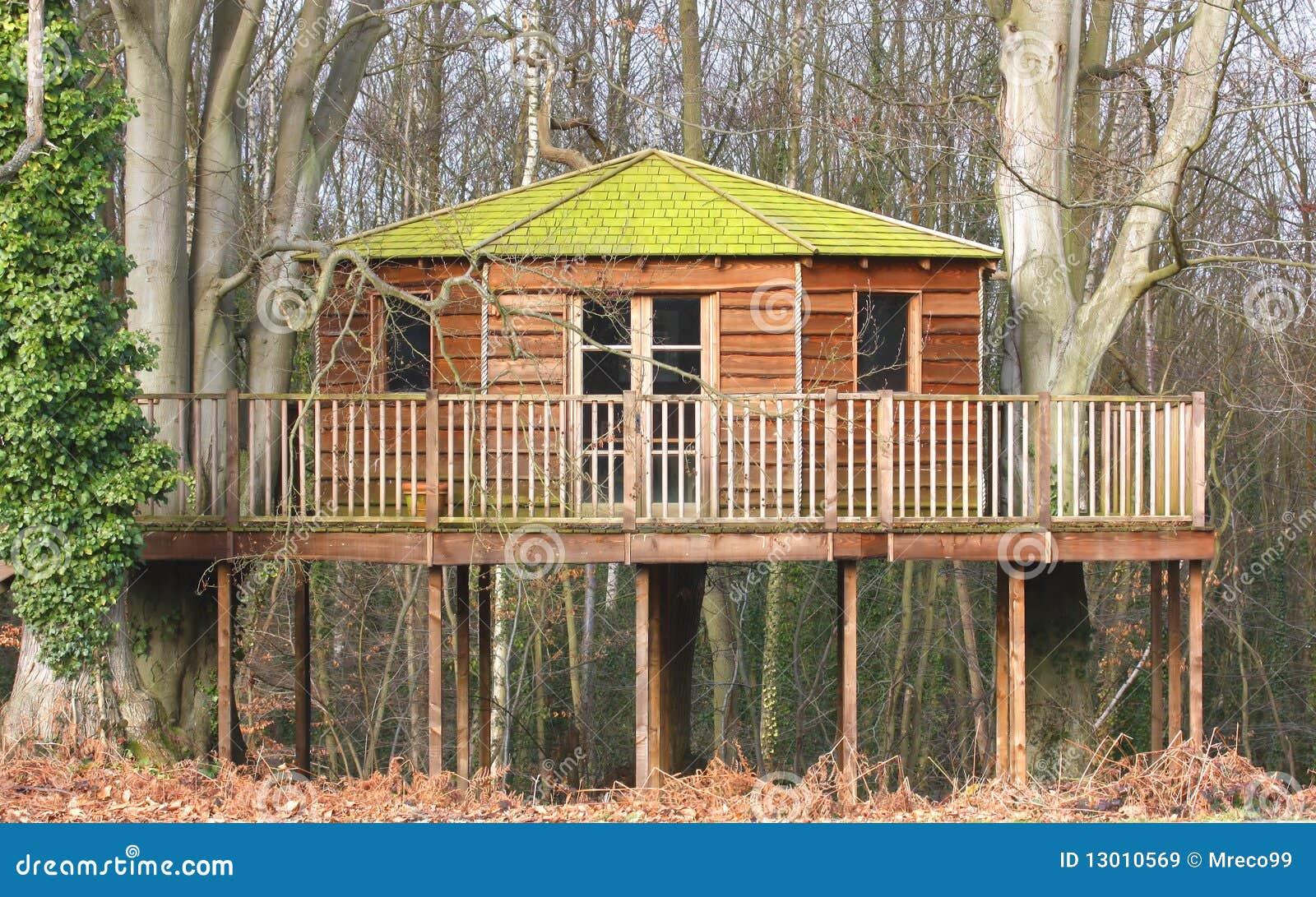 Casa di albero di lusso