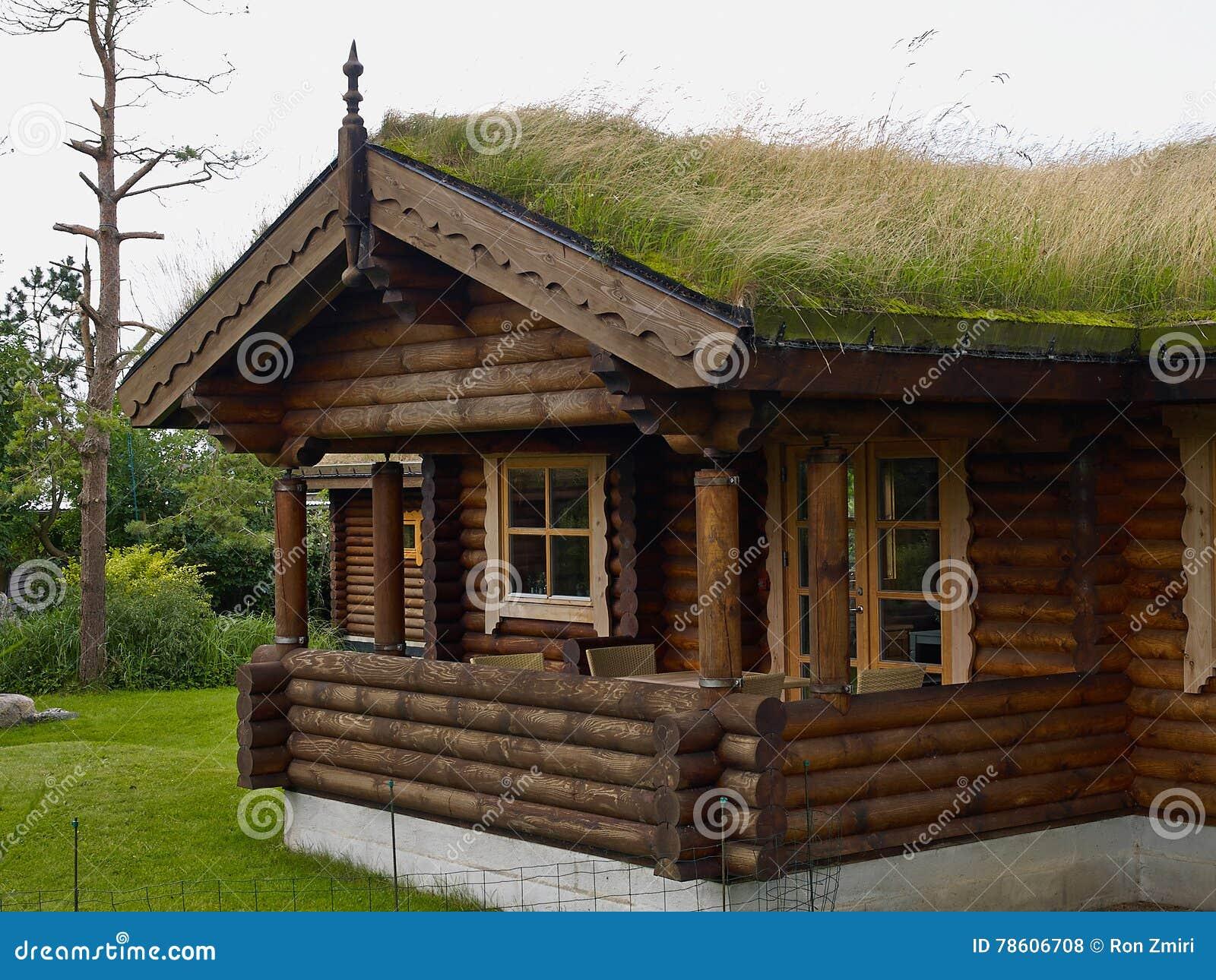 Case di montagna in legno interni case di montagna with for Case di legnosr
