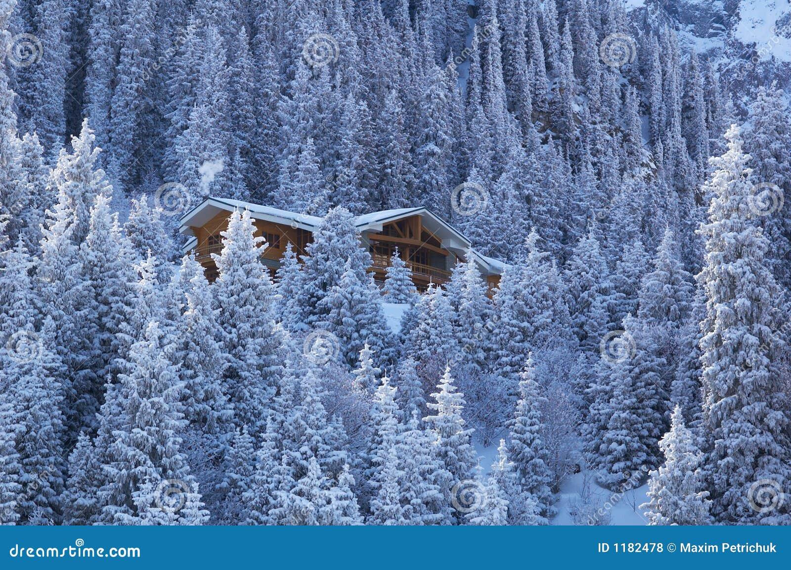 Casa di legno nella foresta della montagna di inverno for Planimetrie della casa di montagna