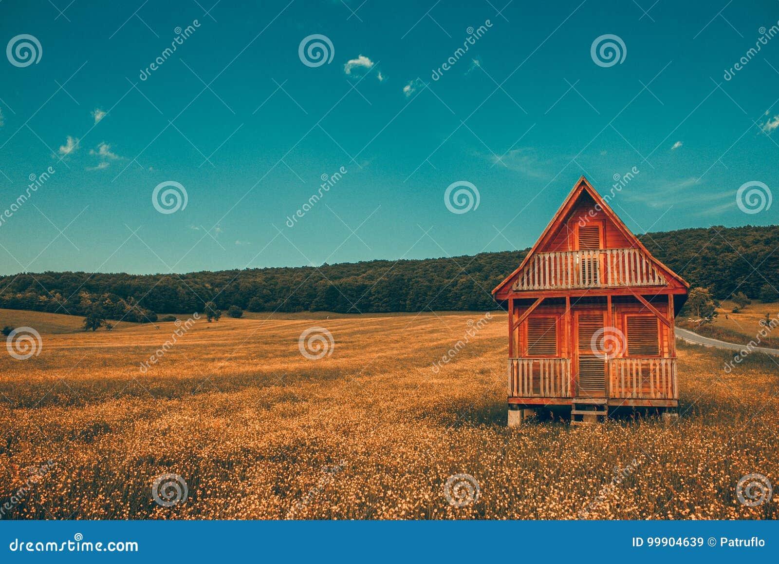 Casa di legno sola del paesaggio fantastico nelle montagne/colline con la foresta in collina del prato del fondo con i gradi gial