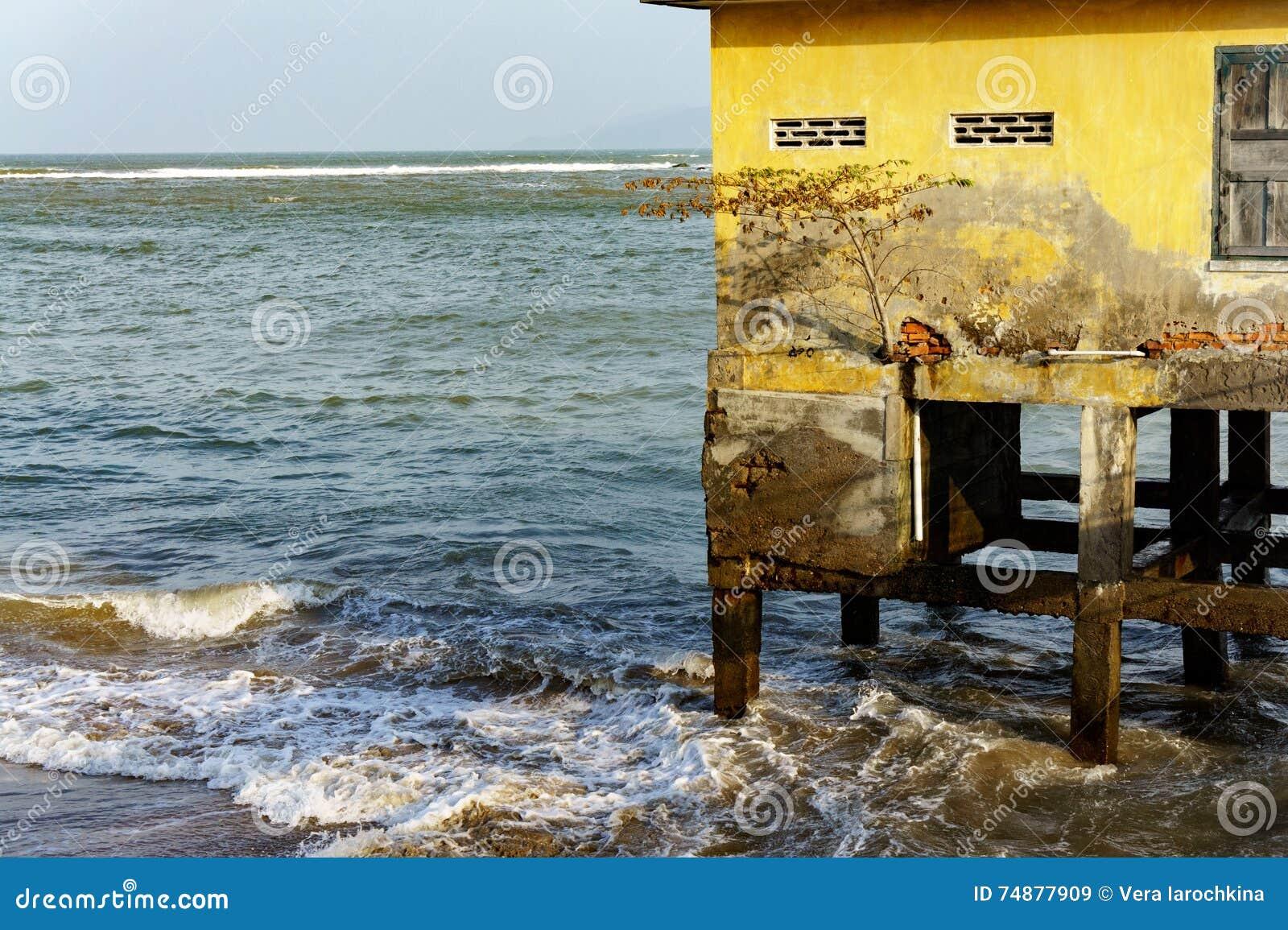 Casa em pernas de pau no mar aberto árvore solitário crescida no