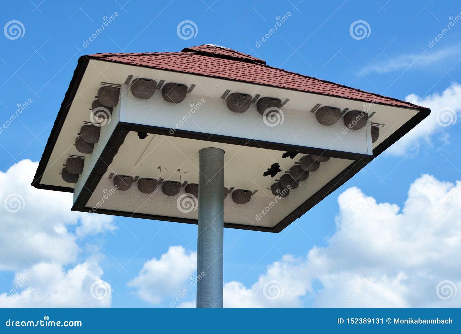 Casa grande do pássaro com as caixa-ninhas sob o telhado na frente do céu azul