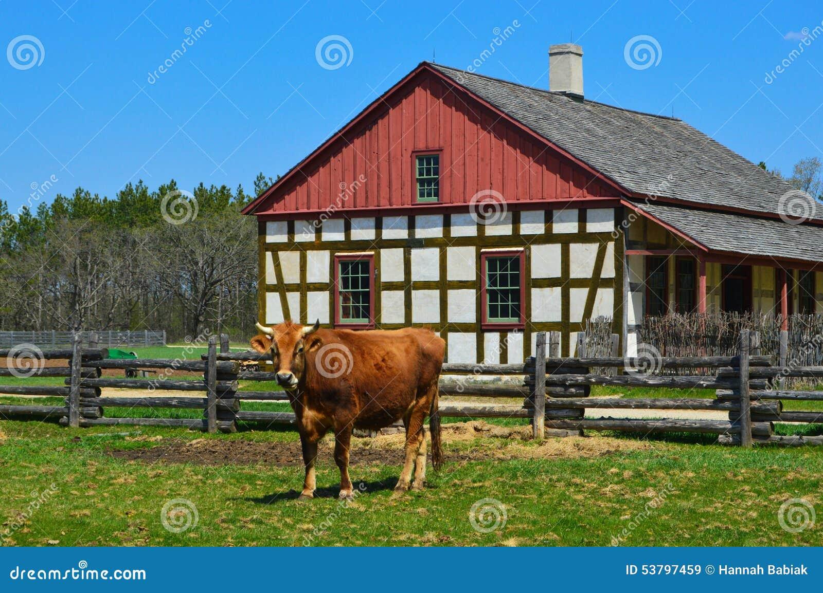 Casa histórica da exploração agrícola de Schultz da vaca