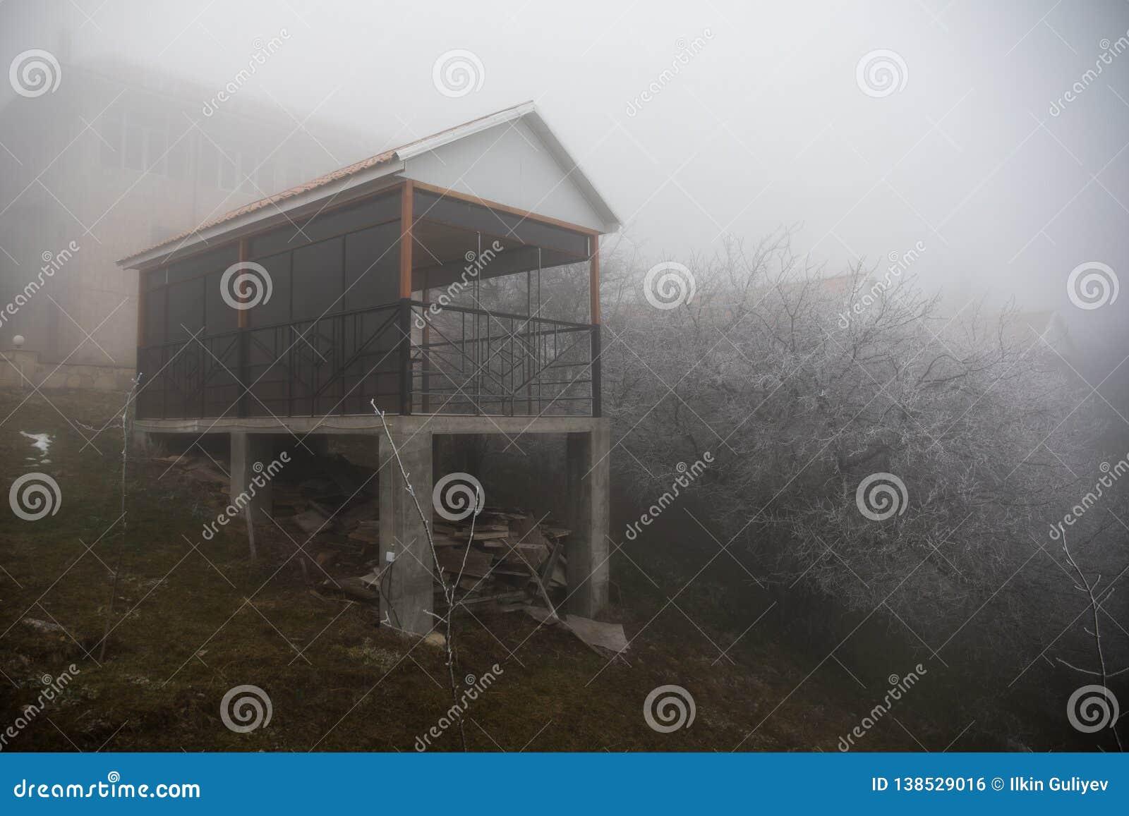 Casa misteriosa nella foresta con nebbia e un albero La vecchia casa spettrale sulla terra di in nessun posto