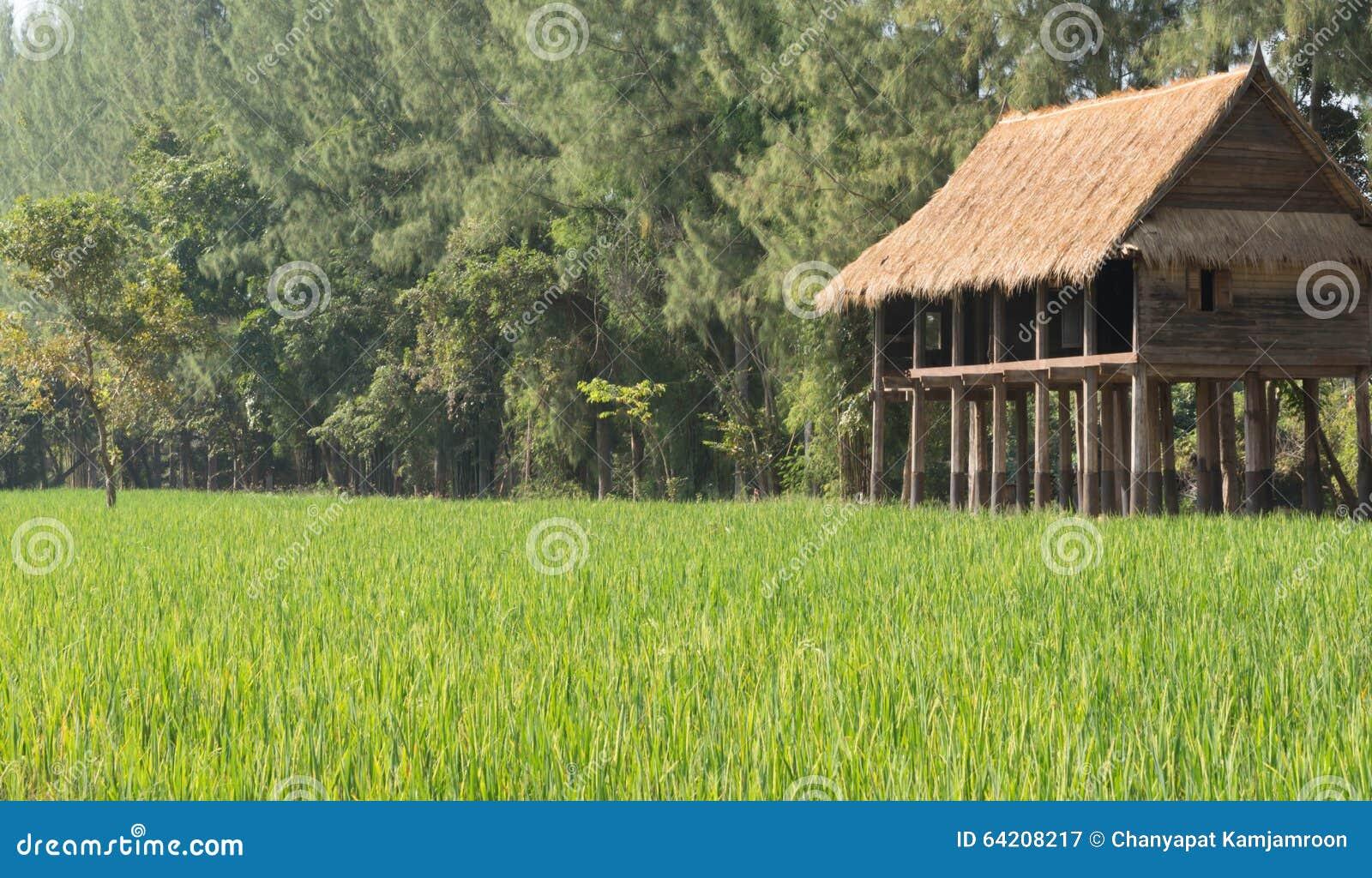 Casa por el campo de Tailandia rural