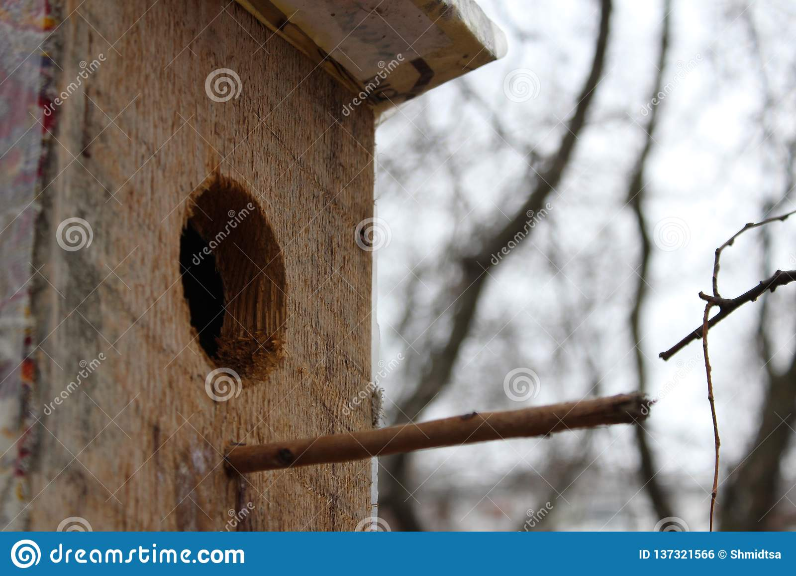 Casa que espera sus pájaros