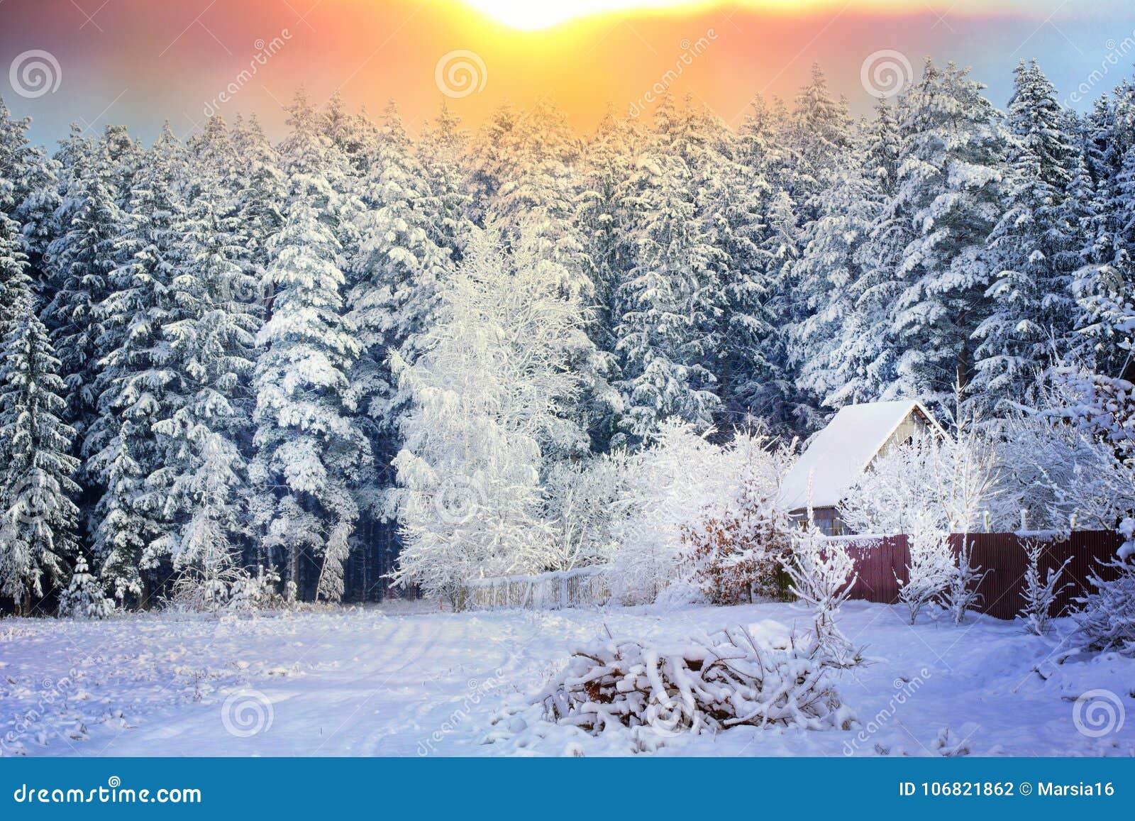 Casa rural al borde de un bosque en la nieve