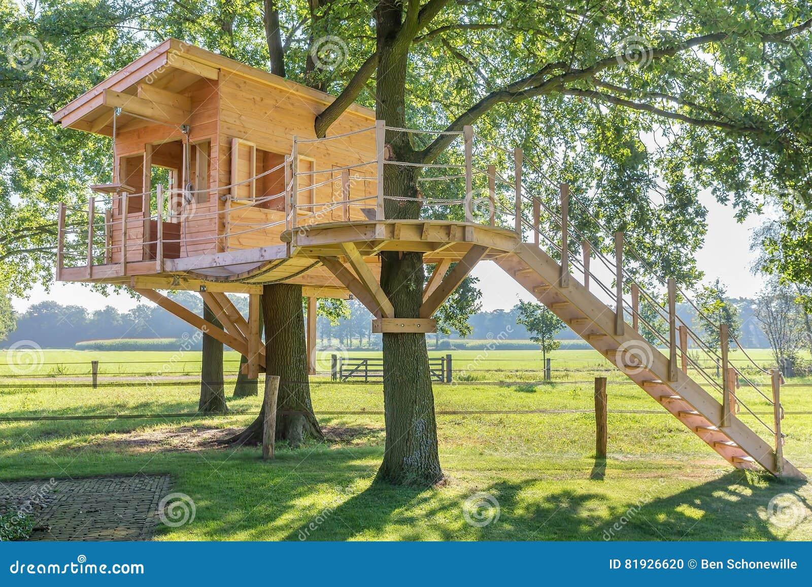 Casa sull 39 albero di legno in quercia con erba fotografia stock immagine di percorso granaio - Casa sull albero airbnb ...