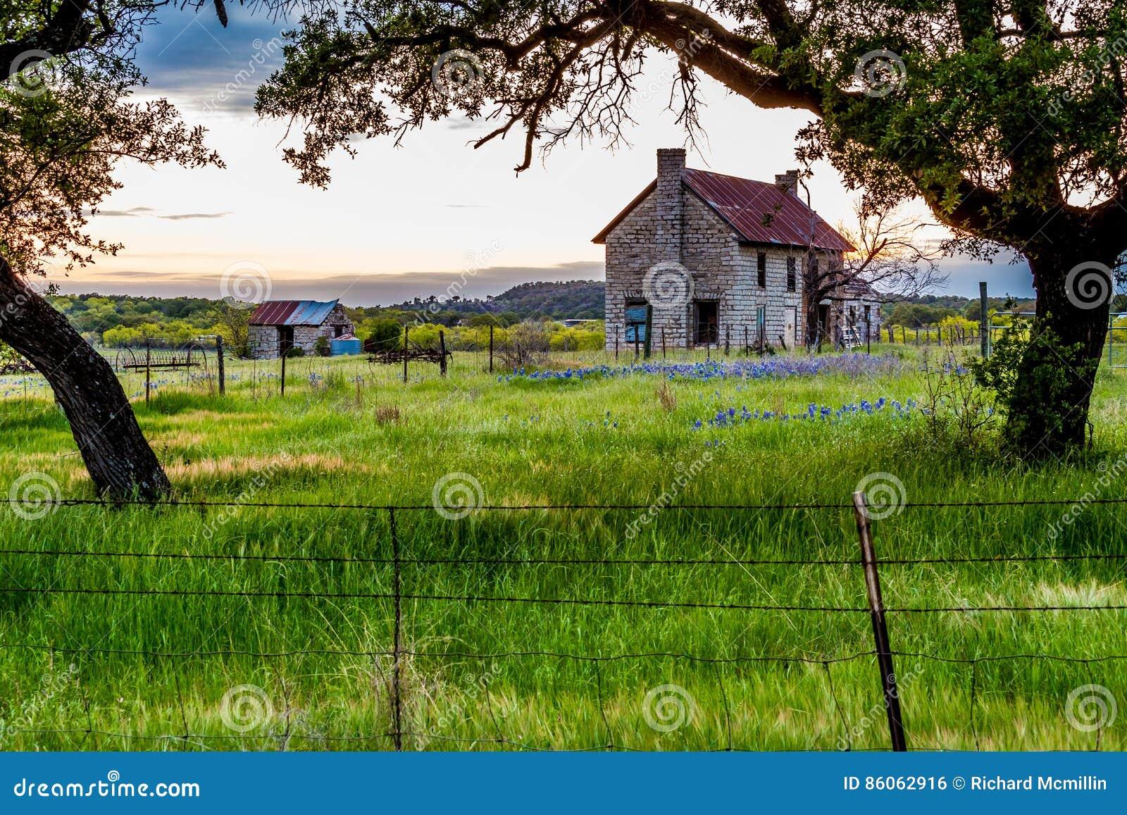 Casa velha de Abandonded em Texas Wildflowers