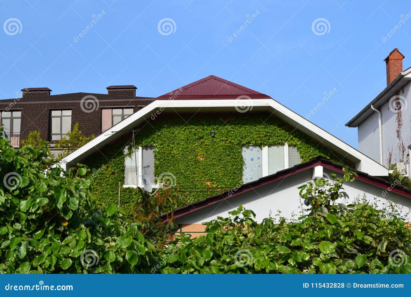 Casa verde grande acima do céu azul