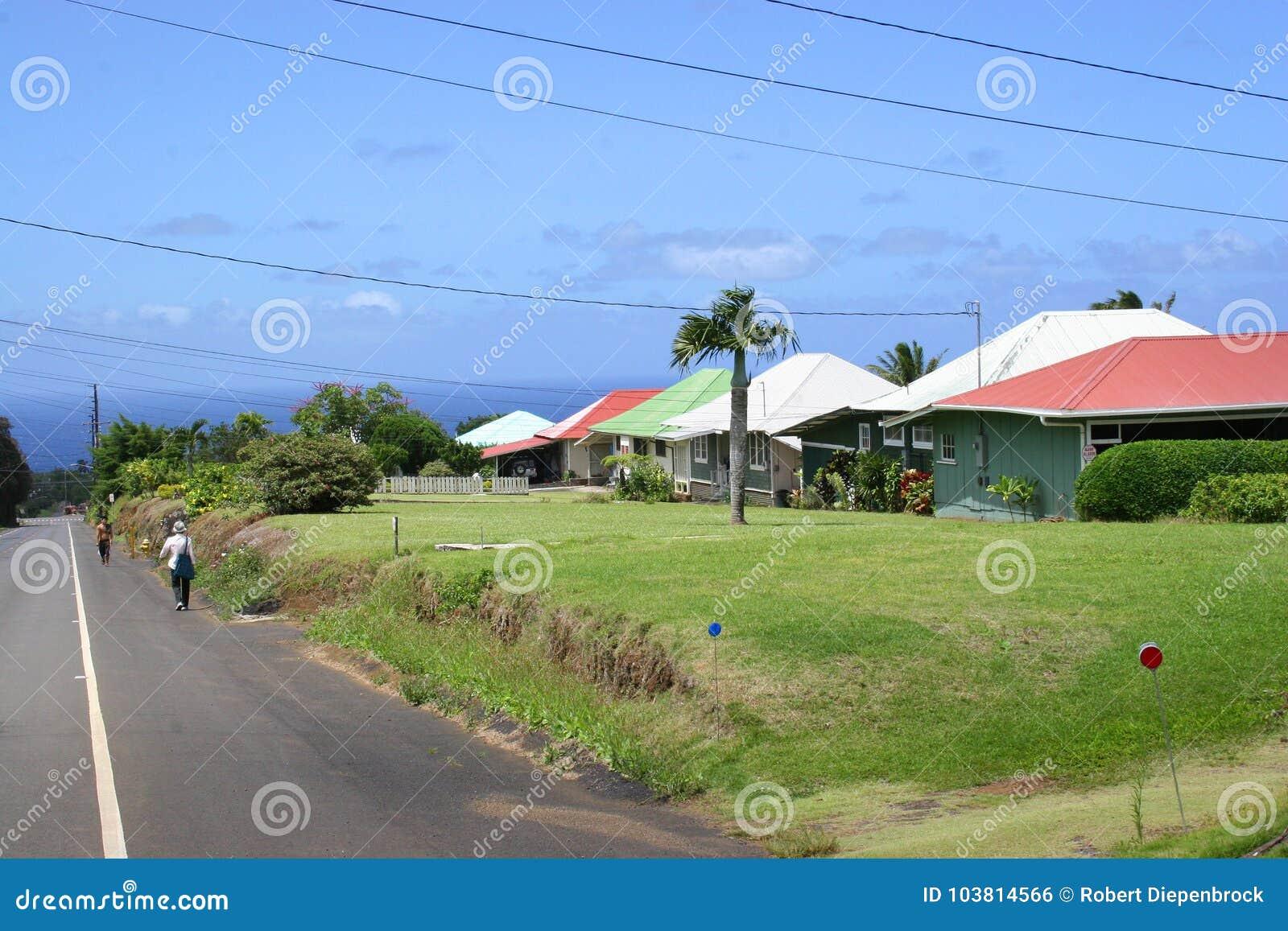 Casas de campo da plantação de Kappau Havaí