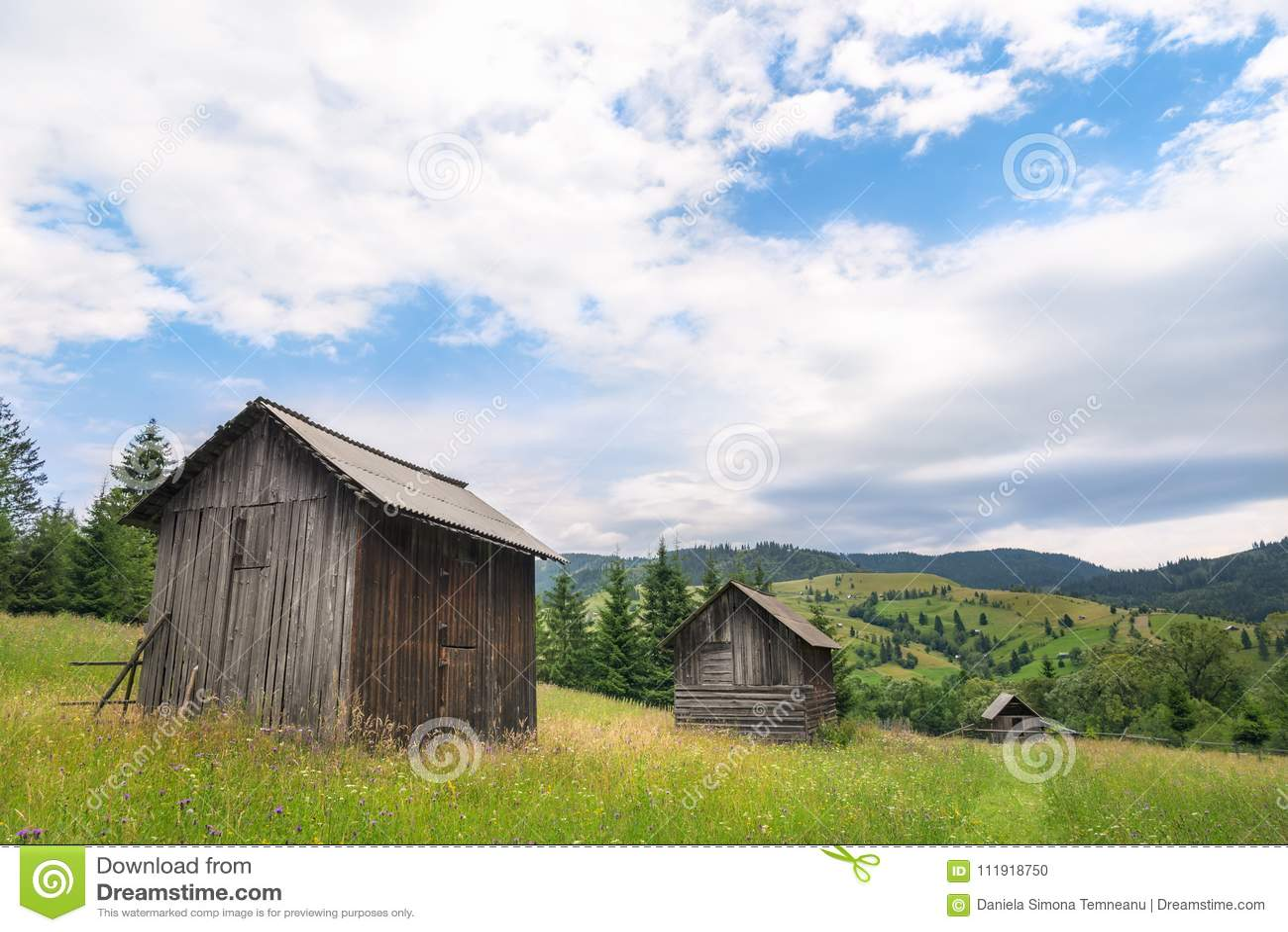 Casas de campo de madeira em uma linha em um prado de florescência