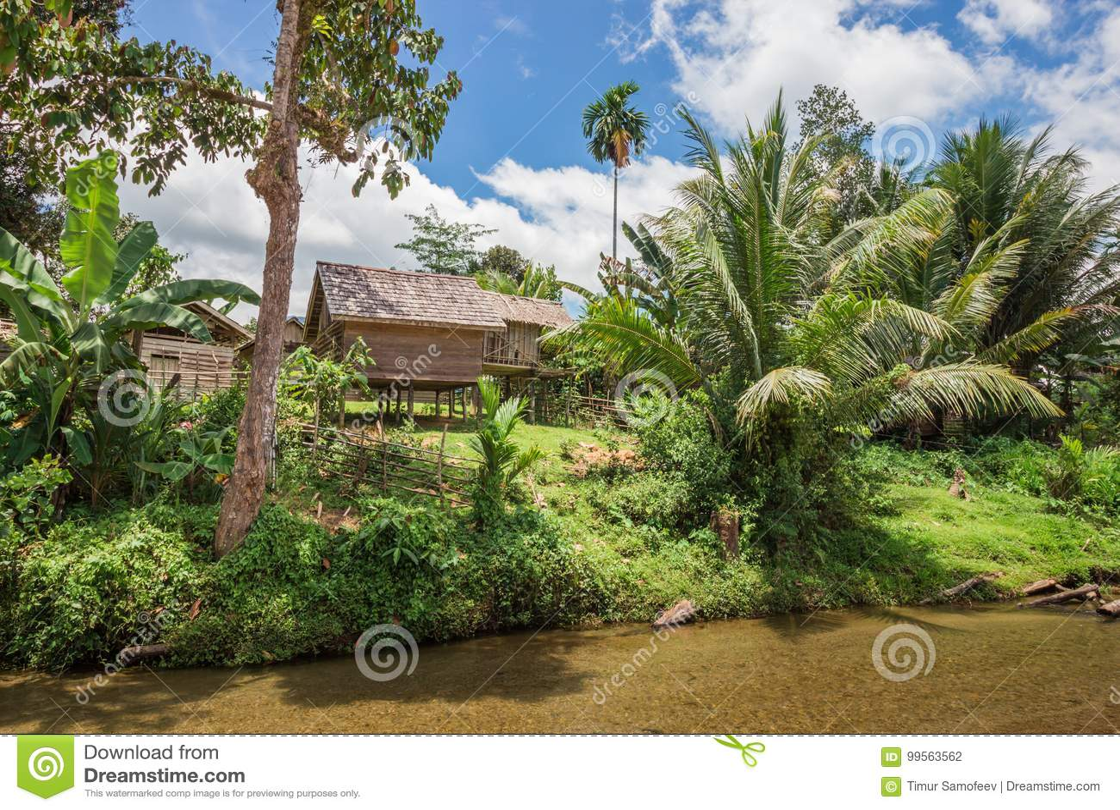 Casas de madera en los zancos con la palma en riverbank en Indonesia