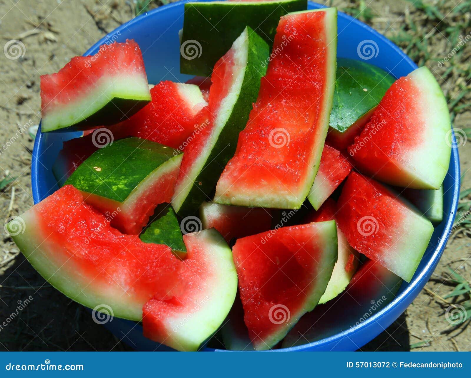 Casca da melancia comida no verão no Sun