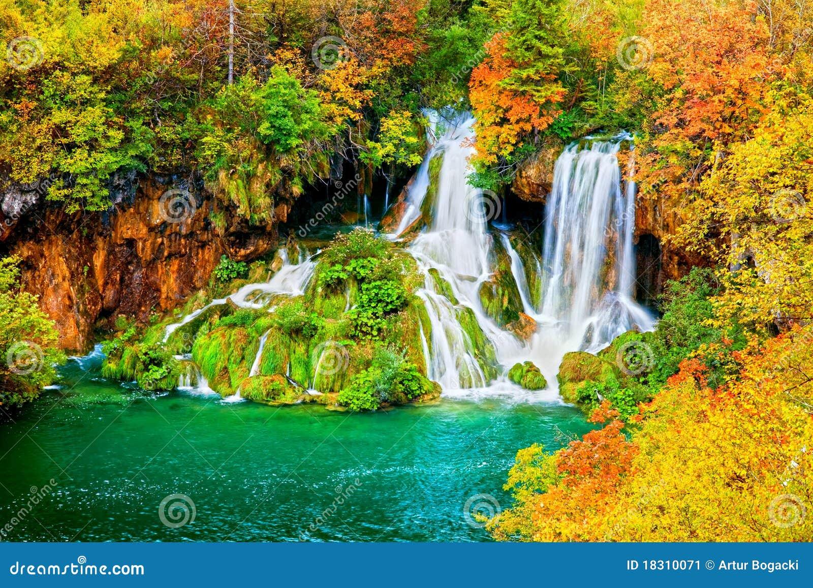 Cascada en bosque del otoño