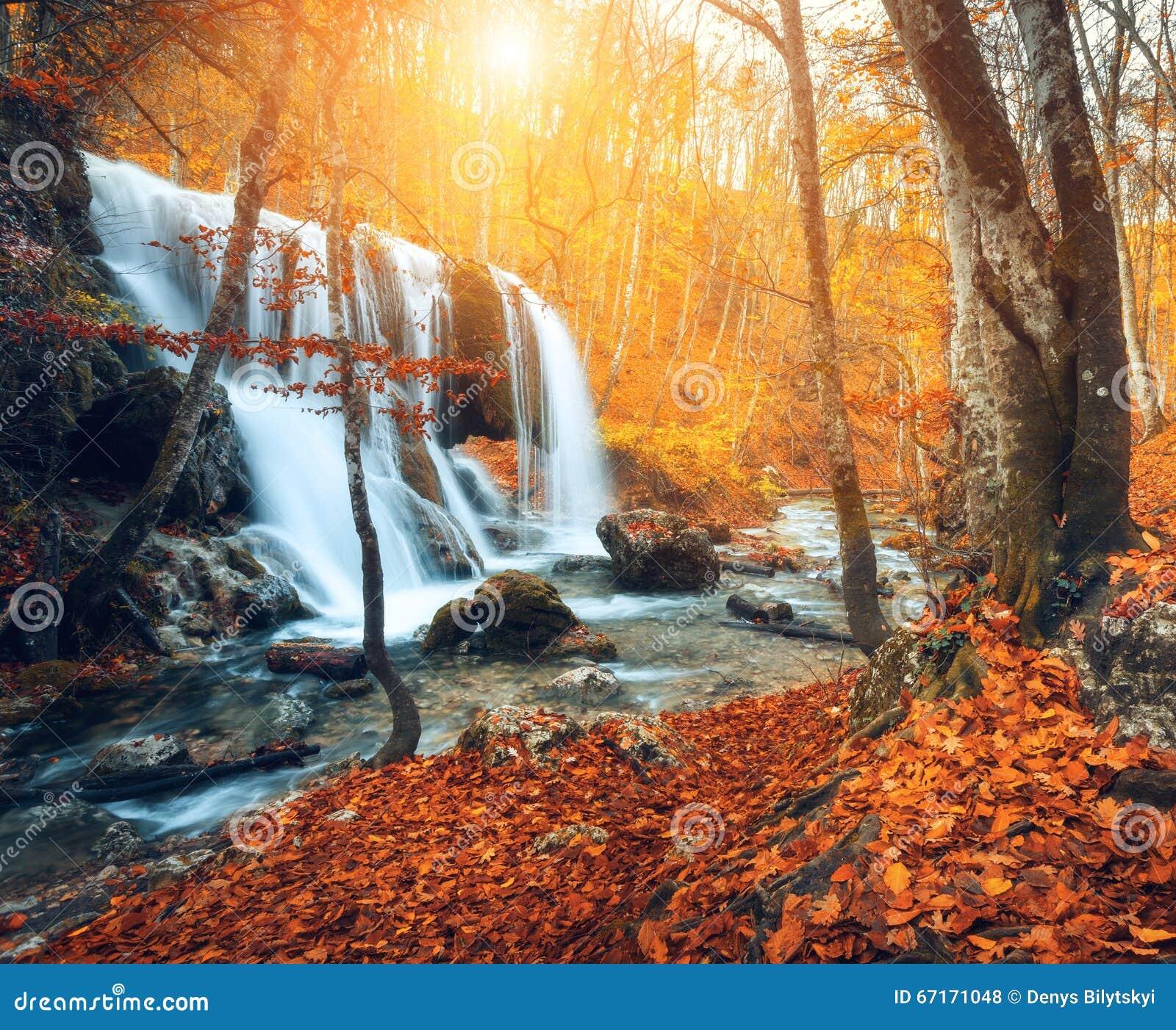 Cascada en el río de la montaña en bosque del otoño en la puesta del sol