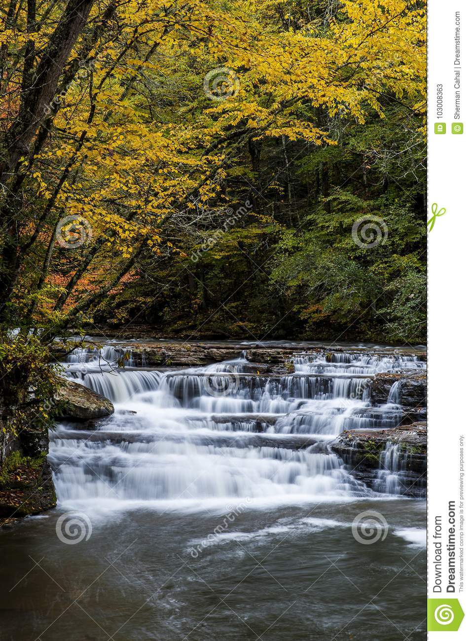Cascada en otoño - Campbell Falls, parque de estado de la cala del campo, Virginia Occidental