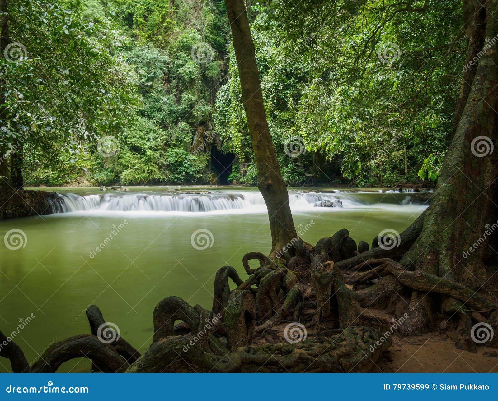Cascada en que el parque nacional Krabi Tailandia de Bok Khorani