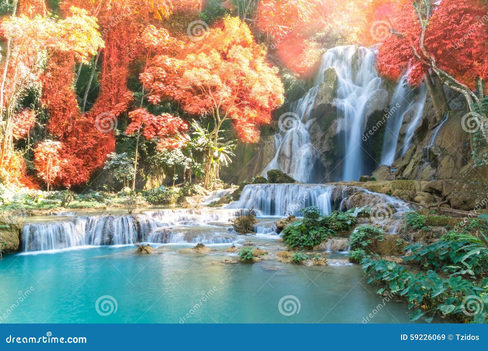 Cascada hermosa con el foco suave y arco iris en el bosque