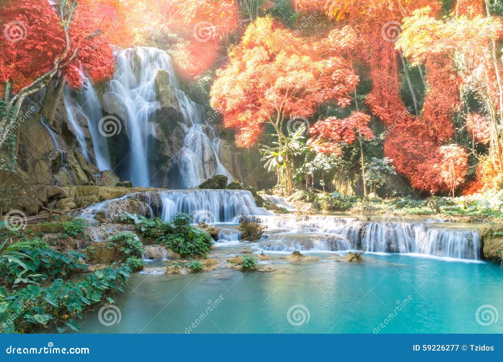Download Cascada Hermosa Con El Foco Suave Y Arco Iris En El Bosque Imagen de archivo - Imagen de cielo, fresco: 59226277