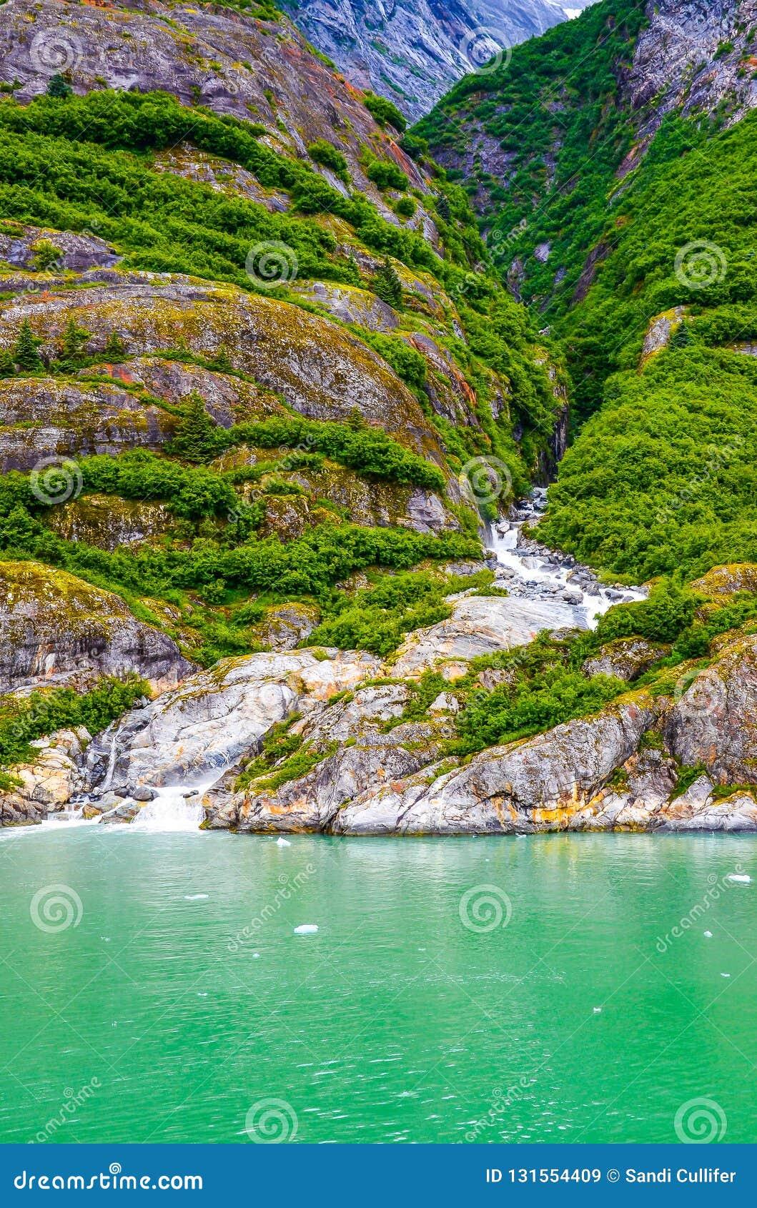 Cascada que corre abajo de un valle de Alaska