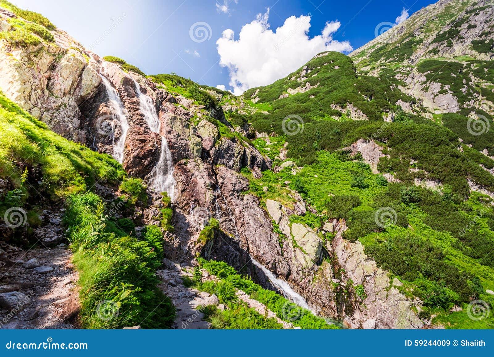 Download Cascada Siklawa En Las Montañas De Tatra Imagen de archivo - Imagen de verano, naturalizado: 59244009
