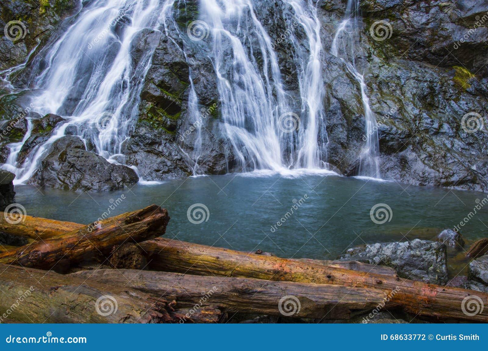 Cascada Wispy de Rocky Brook en bosque del Estado olímpico