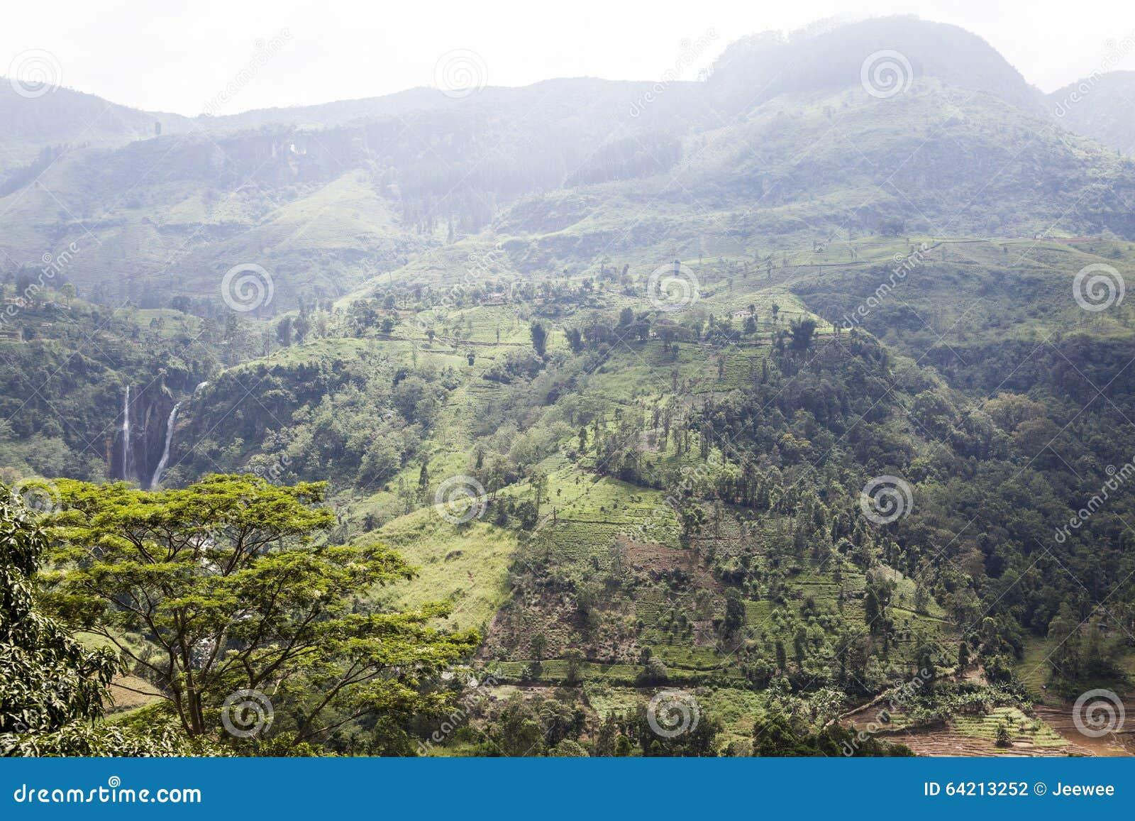 Cascada y colinas en el país de la colina al lado de Nuwara Eliya en Sri Lanka central