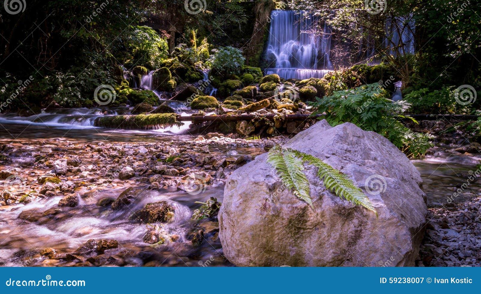 Download Cascada y hoja imagen de archivo. Imagen de río, montañas - 59238007