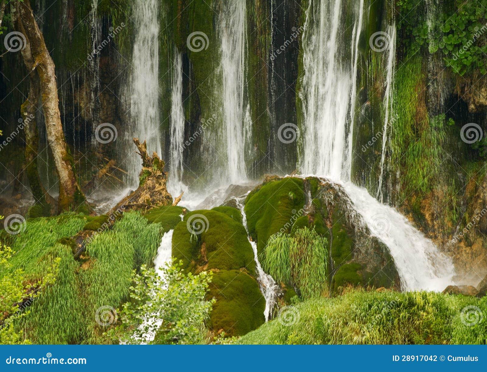 Cascade criture ligne par ligne et mousse verte for Cascada par